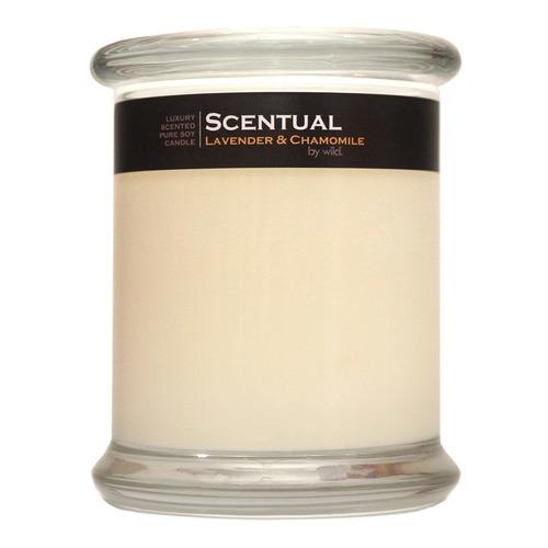 Closeup   soy candle   lavender  26 chamomile web
